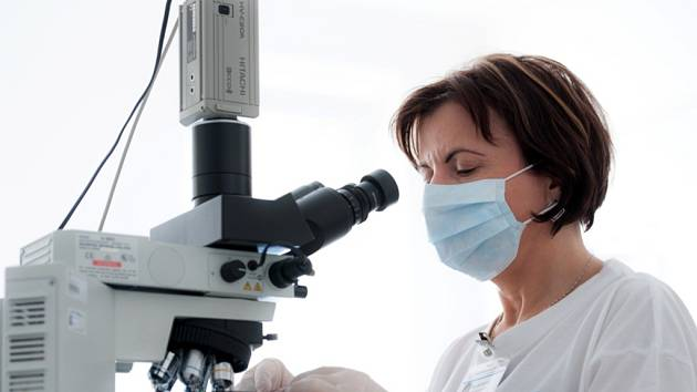 Černý kašel lze diagnostikovat jen laboratorním vyšetřením. Ilustrační fotografie.