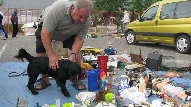 JAROSLAV PÁVEK Z JABLONCE se svým psem nabízejí ke koupi kromě různého haraburdí i sušené a nakládané houby.