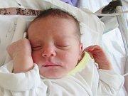 JAKUB ŽĎÁREK Narodil se 5. června v liberecké porodnici mamince Heleně Žďárkové z Liberce. Vážil 2,80 kg a měřil 48 cm.