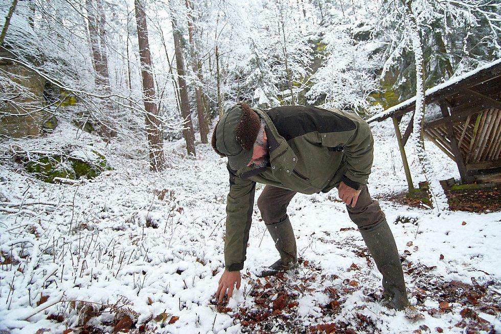 Odborný lesní hospodář Karel Kolář.