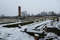 Zimní stadion má vzniknout v prostoru bývalých skleníků. I když už město staveniště předalo, zatím se v Maškovce nic neděje.