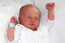 Táňa Šarapatková se narodila 9. července rodičům Terezii a Radimu Šarapatkovým z Oldřichova v Hájích. Měřila  49 cm a vážila  3,1 kg.