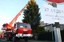 Liberecké náměstí zdobí vánoční strom.