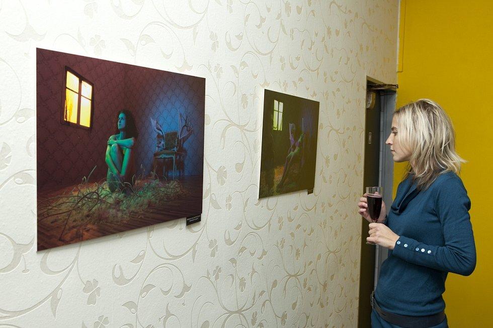 NAHÁ AKTOVKA. Část výstavy Martina Koubka ve Skyy baru.