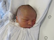 ADAM BURGHARD  Narodil se 30. ledna  v liberecké porodnici mamince Evě Burghardové z Liberce. Vážil 2,88 kg a měřil 51 cm.