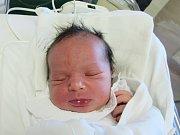 ELIŠKA NOVÁKOVÁ Narodila se 15. března v liberecké porodnici mamince Marii Bajzové z Chrastavy. Vážila 3,10 kg a měřila 48 cm.
