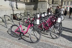Růžová kola v Liberci.