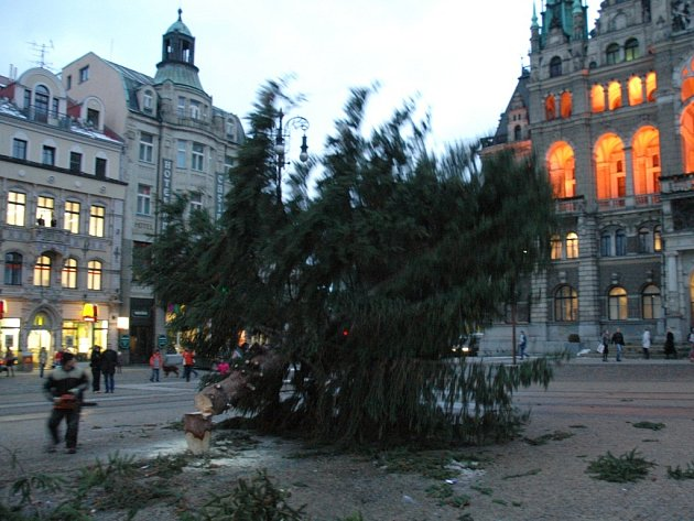 Odstranění vánočního stromu.