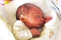 Mamince Radce Novákové z Liberce se 23. května 2010 v jablonecké porodnici narodil syn Robin Novák. Měřil 48 cm a vážil 3,6 kg. Blahopřejeme!