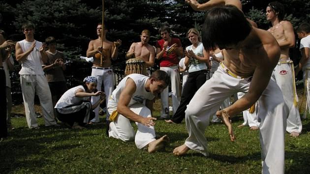 CAPOEIRA. Liberecký oddíl Abada má převážnou část osazenstva v mládeži.