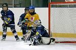 O pohár Bílého tygra se jmenoval turnaj žáků 2. tříd v ledním hokeji, který se hrál ve Svijanské aréně 27.3.
