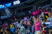 Druhý zápas předkola Generali play off Tipsport extraligy ledního hokeje se odehrál 7. března v liberecké Home Credit areně. Utkaly se celky Bílí Tygři Liberec a HC Sparta Praha. Na snímku sou fanoušci a roztleskávačka Tigers Cats.