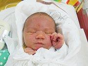 DAVID ZBROJ Narodil se 20. února v liberecké porodnici mamince Michaele Zbrojové z Liberce. Vážil 4,12 kg a měřil 53 cm.