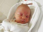 ŠIMON KUBELKA Narodil se 4. února v liberecké porodnici mamince Zuzaně Kubelkové z Liberce. Vážil 3,28 kg a měřil 50 cm.