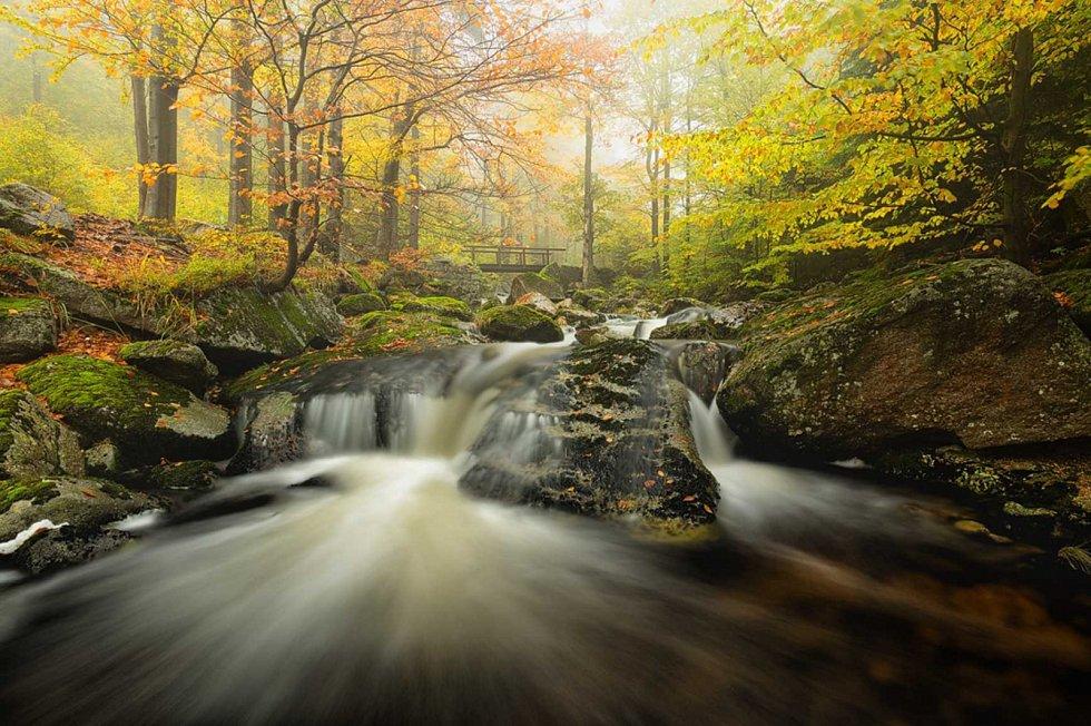 Podzim na Hájeném potoku