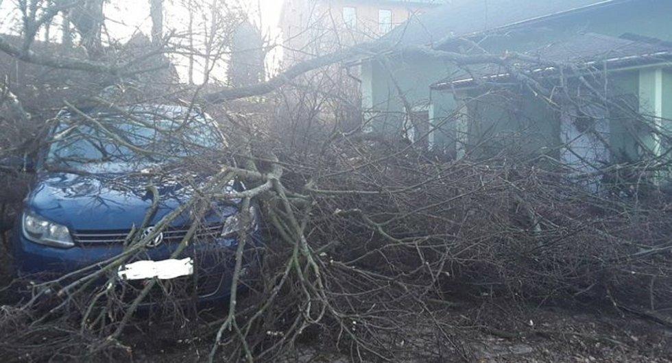 Hodinu po poledni odstraňovali hasiči v Chrastavě  strom, který strhl betonový sloup a poškodil osobní automobil.