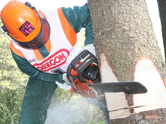 Strom poráží při soutěži Jiří Novotný z lesnického učiliště v Hejnicích.