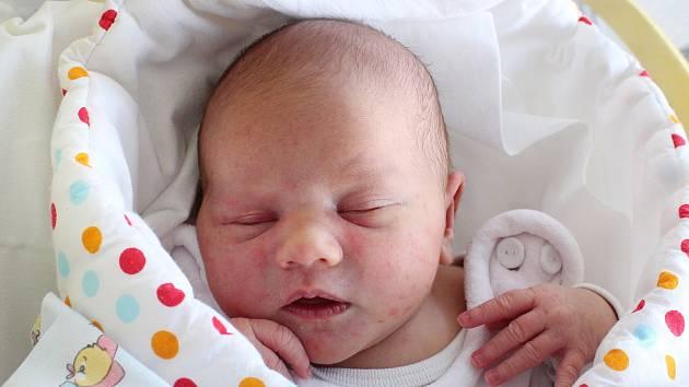 Anna Hofbauerová se narodila 17. února v liberecké porodnici mamince Janě Hofbauerové z Jablonného v Podještědí. Vážila 3,1 kg a měřila 47 cm.