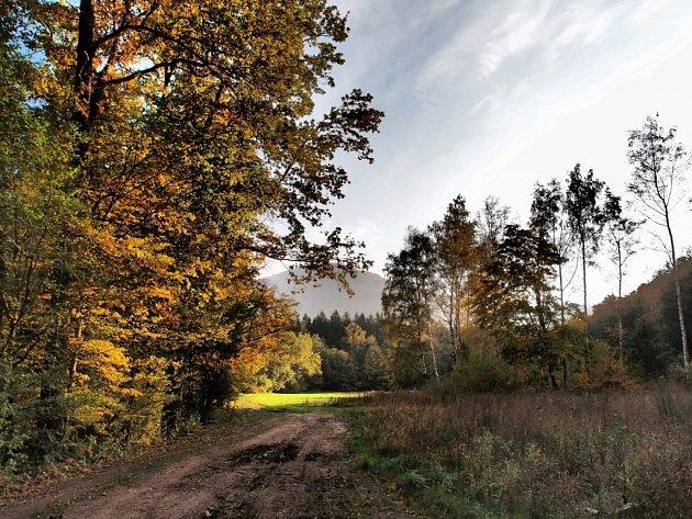 Krajina v Jizerkách.