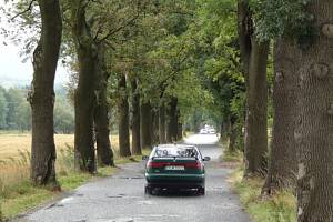 ALEJ Z RASPENAVY ke křižovatce na Krásný Les. Projekt obnovy silnice už se stoletou alejí nepočítá, stromy půjdou k zemi.