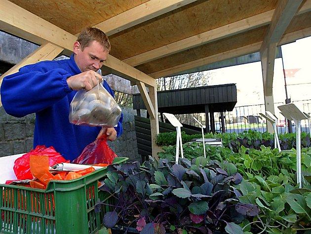 TRHY NIC NENAHRADÍ.  Ačkoliv obchodní řetězce nabízejí širokou škálu čerstvé zeleniny, ovoce a květin, něco jim schází. Lidský prvek a vědomí, že právě tohle zelí, kedlubny nebo brambory vyrostly u Turnova či Pěnčína.