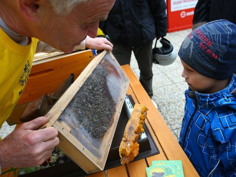 Krajský den včel se uskutečnil v Ekocentru v Oldřichově v Hájích.