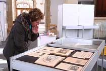 SEVEROČESKÉ MUZEUM připravilo k oslavám 140 let od založení novou výstavu , která představuje to nejzajímavější z historie samotné kulturní instituce i budovy, v níž v současné době sídlí.