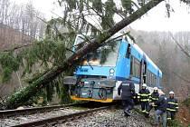 Hasiči měli v pátek s popadanými stromy na Liberecku plné ruce práce.