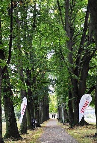 Studenti z Gymnázia Frýdlant už potřetí bořili bariéry.