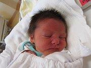 FRANTIŠEK ŠVOMA  Narodil se 6. prosince v liberecké porodnici mamince Stanislavě Švomové z Frýdlantu. Vážil 3,10 kg a měřil 50 cm.