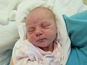 KRISTÝNA HEIDEROVÁ. Narodila se 22. října v liberecké porodnicimamince Marii Novákové z Liberce.Vážila 3,40 kg a měřila 51 cm.