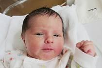 TOMÁŠ MICHALÍČEK Narodil se 17. dubna v liberecké porodnici mamince Janě Michalíčkové z Liberce. Vážil 3,26 kg.