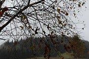 Podzim pod Bukovcem