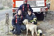Hasiči museli nejprve rozbít podlahu a udělat otvor do studny, pak postavili kladku a jeden z hasičů se k pejskovi vydal, připevnil ho na zařízení a pomalu ho dostali ven.