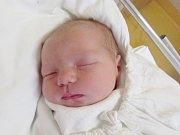 ADÉLA DRNCOVÁ Narodila se 3. dubna v liberecké porodnici mamince Miroslavě Mackové z Hrádku n. N. Vážila 3,73 kg a měřila 51 cm.