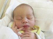 TEREZIE SCHEJBALOVÁ Narodila se 19. června v liberecké porodnici mamince Lucii Tvrdé z Liberce. Vážila 3,38 kg a měřila 51 cm.
