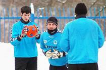 BRANKÁŘI NA SNĚHU. Gólmani Slovanu Ivan Hosman (vlevo) a David Bičík poslouchají pokyny před včerejším tréninkem.