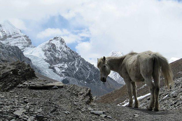 Život v Nepálu.