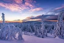Sněžní strážci