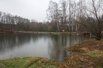 Vesecký rybník.