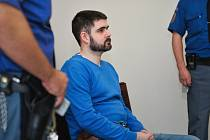 Dvacet let za mřížemi případně výjimečný trest,  hrozí třiatřicetiletému Lukáši Havlíčkovi z Liberce.