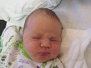 ALEXANDER VINTONYAK Narodil se 8. ledna 2018 v liberecké porodnici mamince Natalii Vintonyak z Liberce. Vážil 3,10 kg a měřil 48 cm.
