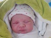 JAN ZADINA Narodil se 15. června v liberecké porodnici mamince Martině Kovalčíkové z Liberce. Vážil 3,18 kg a měřil 50 cm.