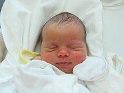 BABETA BŘENKOVÁ  Narodila se 15. ledna v liberecké porodnici mamince Veronice Hanelové z Liberce.  Vážila 3 kg a měřila 48 cm.