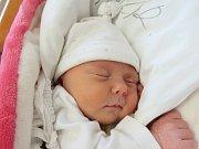 LAURA HANZL Narodila se 14. října v liberecké porodnici mamince Lucii Hanzl z Jablonce nad Nisou. Vážila 3,04 kg