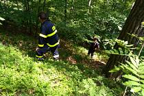 Pohřešovaný 46letý muž byl během rozsáhlé pátrací akce v odpoledních hodinách nalezen bez známek života v katastru obce Besedice v blízkosti Skalního města.