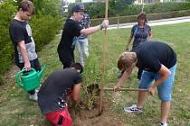 Nadace vyhlásila grantový program ekologické výchovy dětí pro rok 2020.