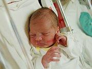 ELENA DANYIOVÁ  Narodila se 22. prosince v liberecké porodnici mamince Marcele Danyiové z Frýdlantu.  Vážila 2,98 kg a měřila 58 cm.