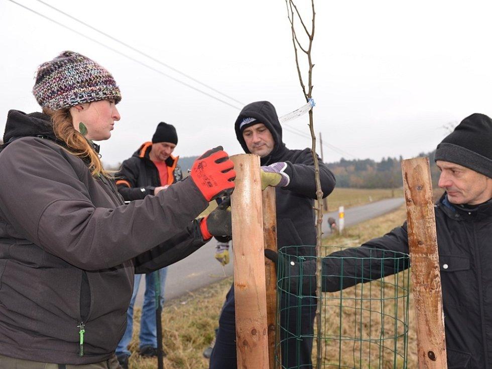 ZE ZDISLAVY DO KŘIŽAN vyrostla nová ovocná alej. Několik stromů zasadil i hejtman Libereckého kraje Martin Půta.