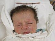 TINA POUSTKOVÁ Narodila se 19. února 2018 v liberecké porodnici mamince Lence Poustkové z Liberce. Vážila 2,92 kg a měřila 48 cm.